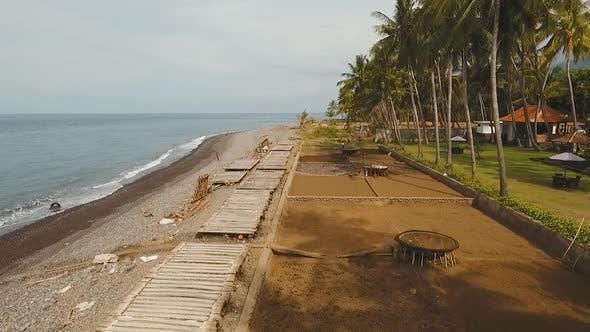 Salt Production in Bali