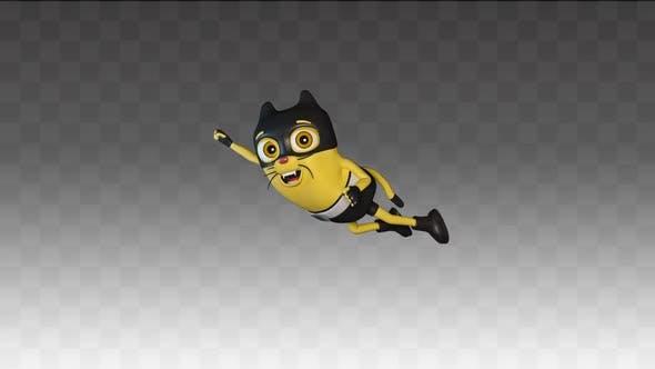 Cat Thomas  flies