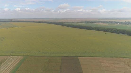 Thumbnail for Luftaufnahme von landwirtschaftlichen Flächen
