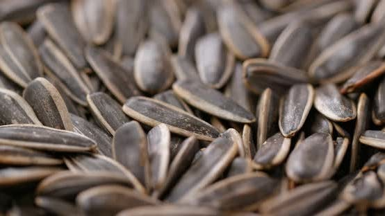 Thumbnail for Stack of sunflower seed