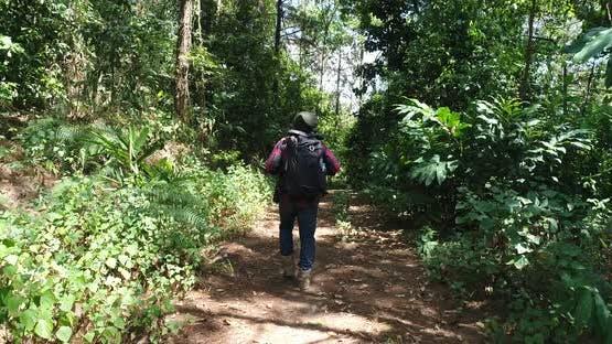 Hiking Walking