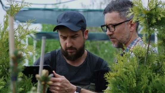 Thumbnail for Gardeners Examining Plant