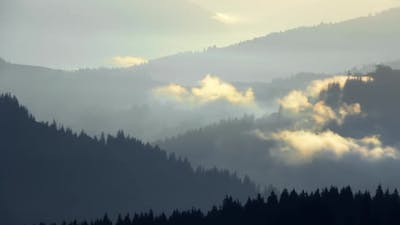 Dawn Fog Over Wooded Mountains