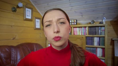 Young Woman Videoconferencing By Web Cam with Collegues, Disagrees