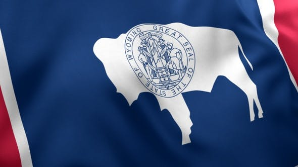 Thumbnail for Wyoming State Flag