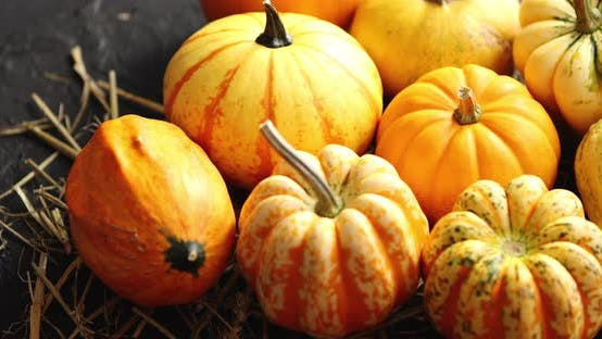 Thumbnail for Heap of Pumpkins with Hay
