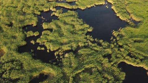 Natural Lake Lagun