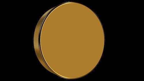 Golden Hockey Puck