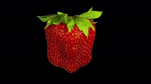 Thumbnail for Rotating Isolated Strawberry