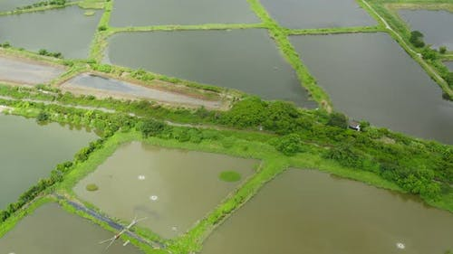 Drone fly over Fish hatchery pond
