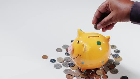 Thumbnail for Many Coins Into Piggy Bank