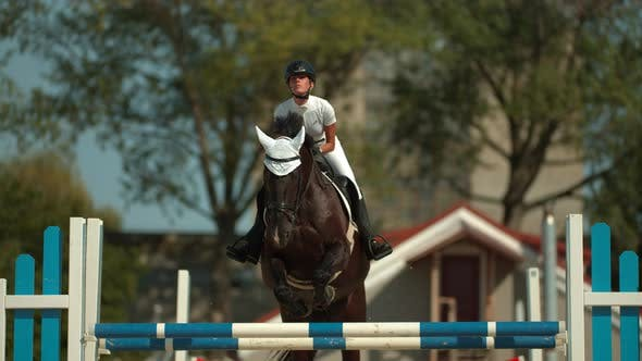 Thumbnail for Horse jumping over obstacle, Ultra Slow Motion