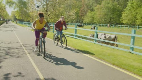Carefree Multiracial Female Friends Chasing on Bikes Outdoors