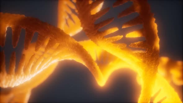 Thumbnail for Loop Double Helical Structure of Dna Strand Close-up Animation
