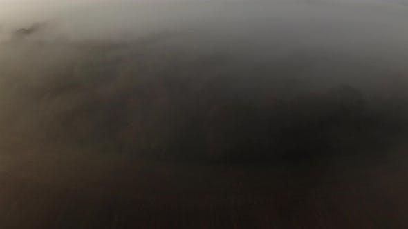 Cover Image for Drohne über Wald im Morgennebel