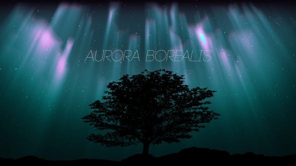 Thumbnail for Aurora Borealis And Tree Oak (2 in1)