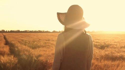 the Sun's Rays Shine on the Farmer