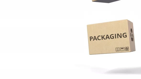 Thumbnail for Fallende Boxen mit RECYCLED PACKING Text