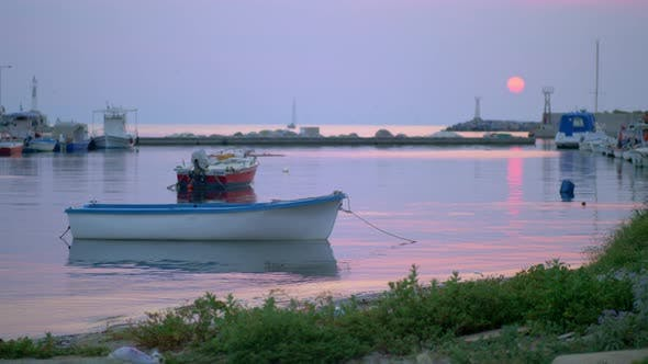 Thumbnail for Marine Evening Scene of Quiet Harbour with Tied Up Boats and Sea-gulls