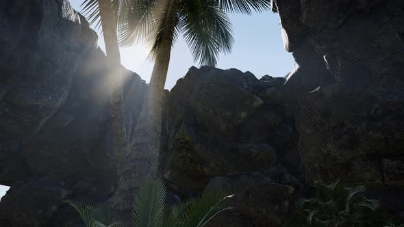 Thumbnail for Sunbeam in Cave with Palms
