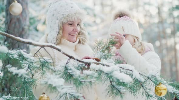 Cover Image for In Anticipation of Christmas, Mom and a Little Girl Decorate in the Yard of the House a Christmas