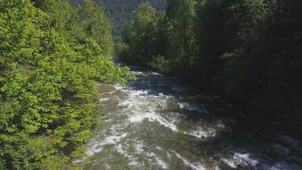 Thumbnail for Aerial Drone Footage Of Rushing Water Rapids Between Evergreen Trees 1