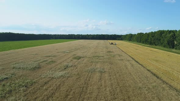 Thumbnail for Aerial Drone Footage. Combine Harvester Loading Track on Field
