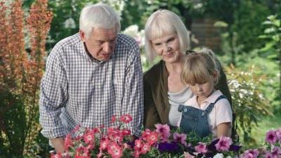 Elderly Couple and Little Girl in Garden