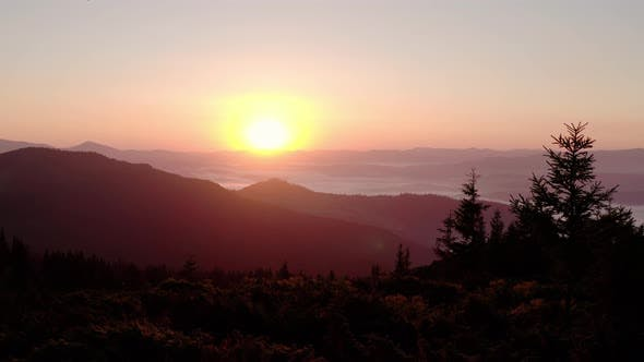 Thumbnail for Aerial Drone View. Sunrise or Sunset in the Mountains, Flying Over the Trees in the Sun V2