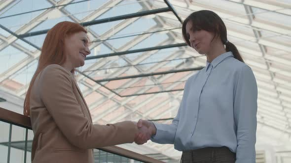 Pair of Young Businesswomen Shaking Hands