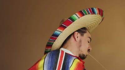 Young Mexican In Multicolored Poncho And Hat