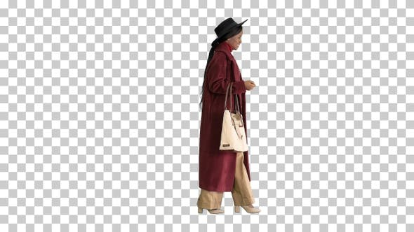 Thumbnail for Beautiful african american woman walking, Alpha Channel