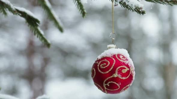 Thumbnail for Christmas Ball Hanging on the Christmas Tree