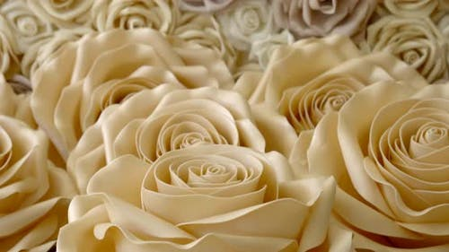 Amazing Light Artificial Roses Are Lying on Table, Panoramic Shot