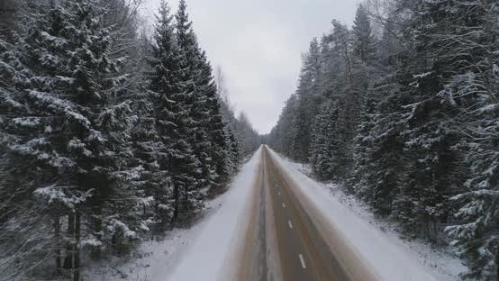Thumbnail for Winter Road in the Forest