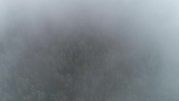 Thumbnail for Morning in Mountain and Beautiful Fog