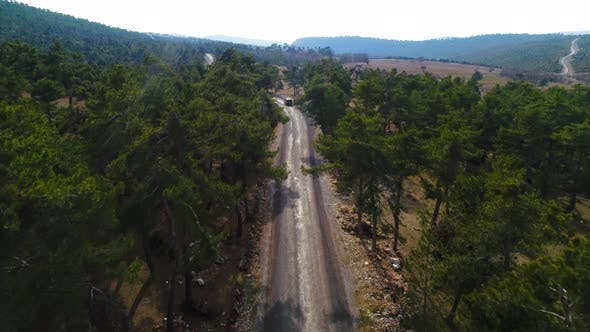 Cover Image for Aerial Of The Road In Forest
