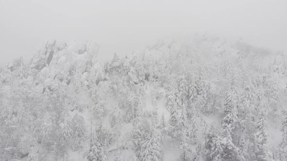 Winter Forest Mountains Storm Ice Cold Aerial Tree