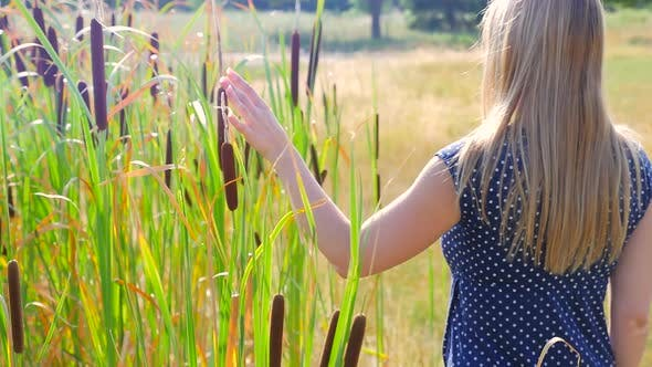 Cover Image for Female Walking Beside Tall Grass And Touching With Her Hand Bulrush3
