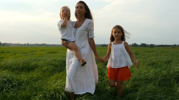 Mom With Children Walking On Green Fields, Mother and Her Little Daughters Walk Summer Evening