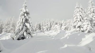 POV  a Person Walks Through a Snowcovered Winter Landscape