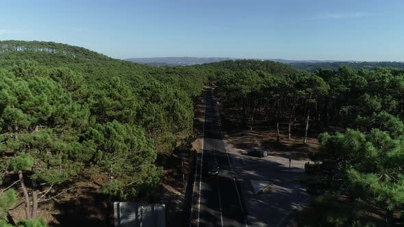 Thumbnail for Forest Road Aerial