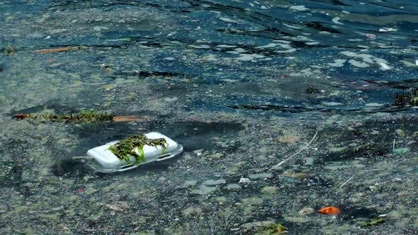 Thumbnail for Water Pollution Floating Garbage