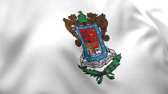 Michoacan Flag (Mexico)