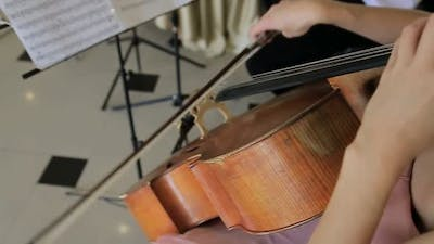 Game on the violin, the girl plays the violin