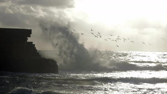 Thumbnail for Skyline Seascape with Flying Sea-gulls and Ancient Wall