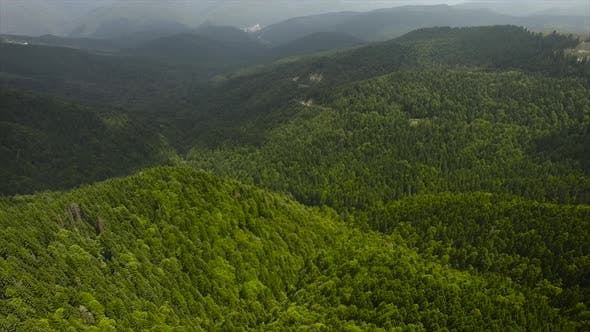 Thumbnail for Flying Over Big Forest In The Forested Mountains