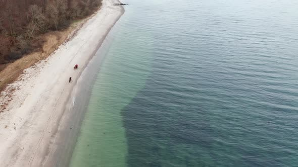 Thumbnail for Horses Galloping on a Breath Taking Shoreline in Denmark