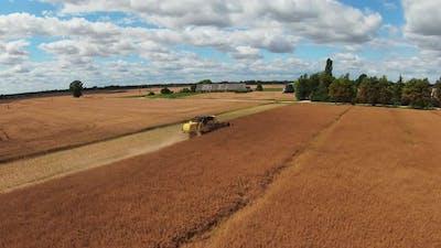 Combine Harvester Harvesting Large Field