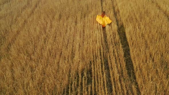 Cover Image for Beautiful Woman in Dress at Sunset in a Wheat Field.